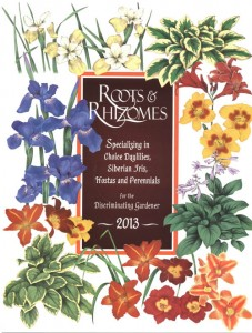 Roots and Rhizomes 2013