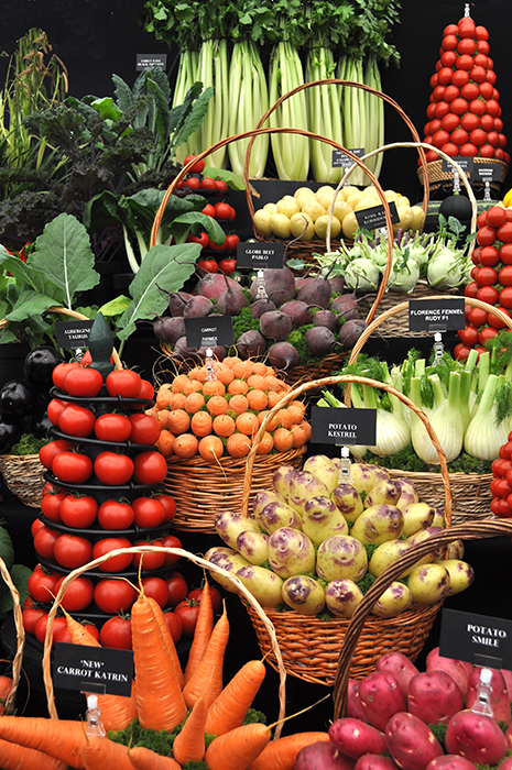 Chelsea veggies no logo