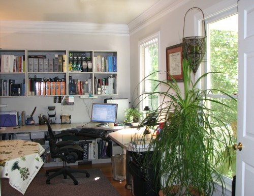 F_F-RVA-working-home-office