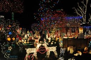Christmas lights low